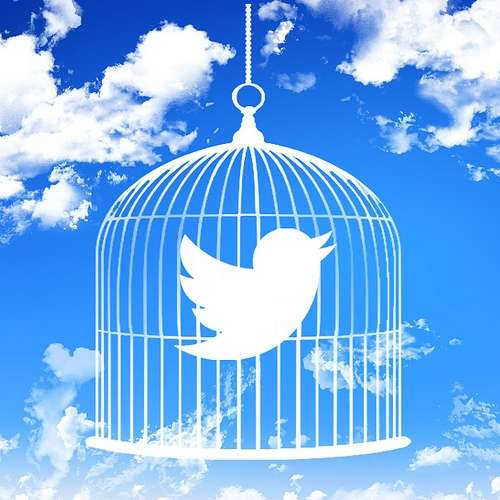 twitter-cage