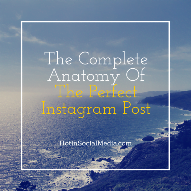 The Complete Anatomy Of The Perfect Instagram