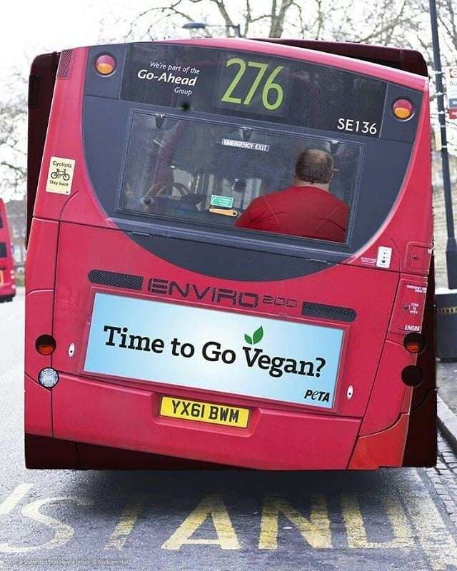 "PETA ""Time to go vegan"""